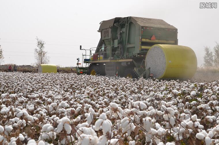 新疆棉花事件来龙去脉 来看事件真相